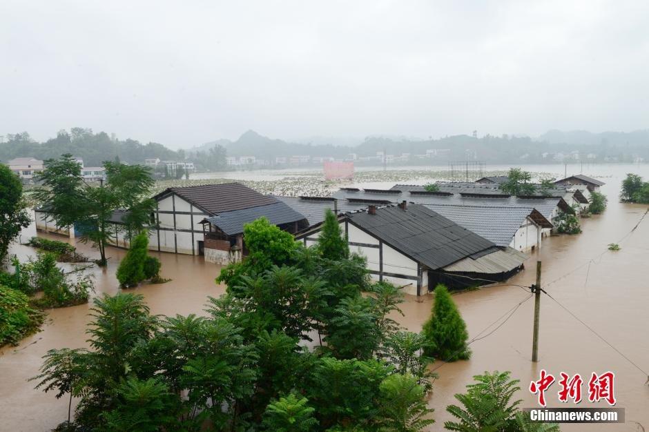 四川重庆遭遇暴雨袭击 部分地区水没腰