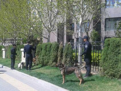 北京清河一女子当街被割喉 警方介入